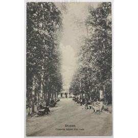 """Антикварная открытка """"Белев. Главная аллея городского сада""""."""